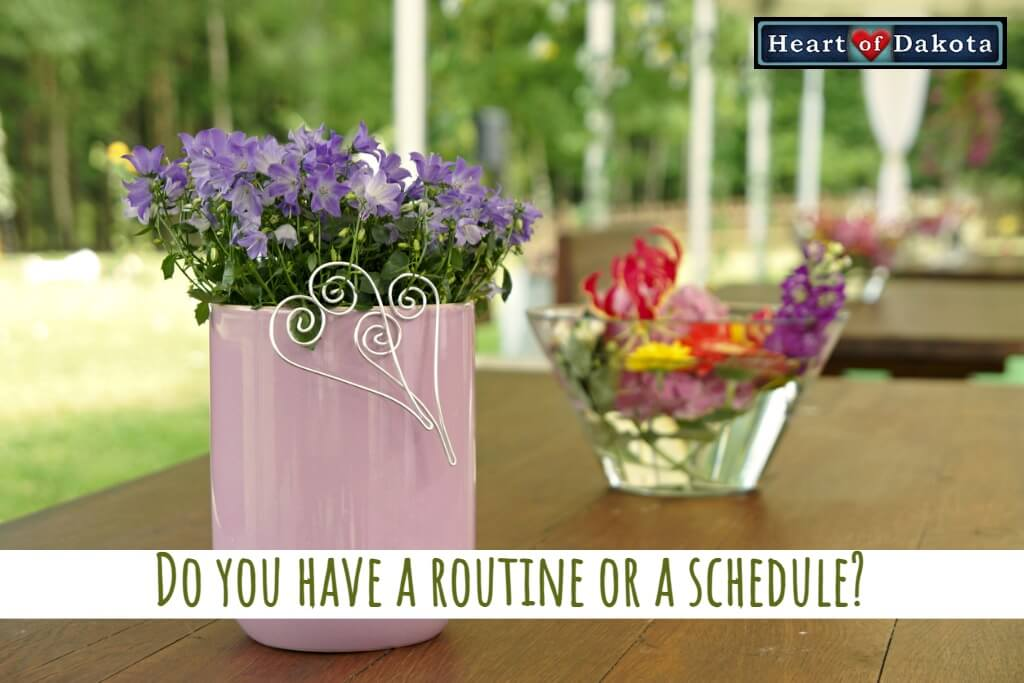 Do you have a routine or a schedule?