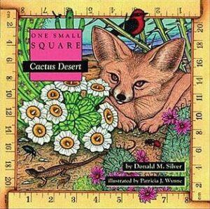 One Small Square: Cactus Desert
