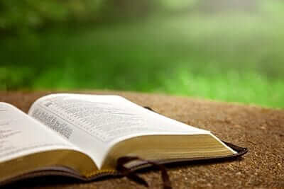 We Weave God's Precepts and Word Throughout