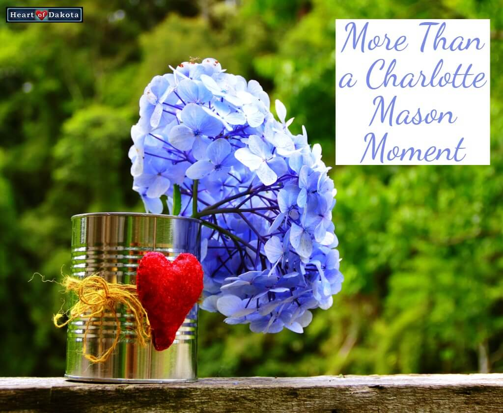 Heart of Dakota More than a Charlotte Mason Moment Art