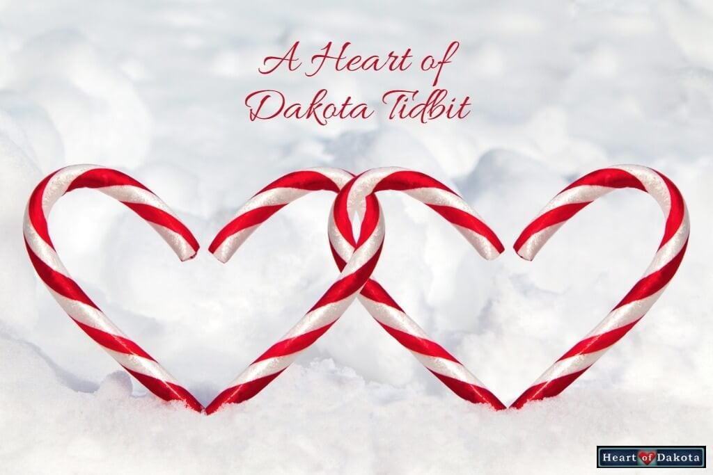 Heart of Dakota Tidbit Homeschooling Gives Freedom to Grow Interests