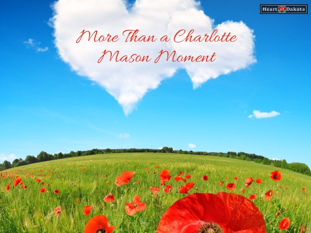 Field with red poppies and blue sky overhead. In the sky float heart shaped clouds.