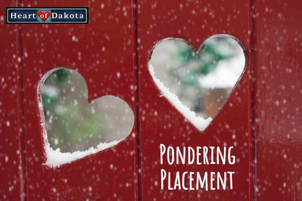 Heart of Dakota - Pondering Placement