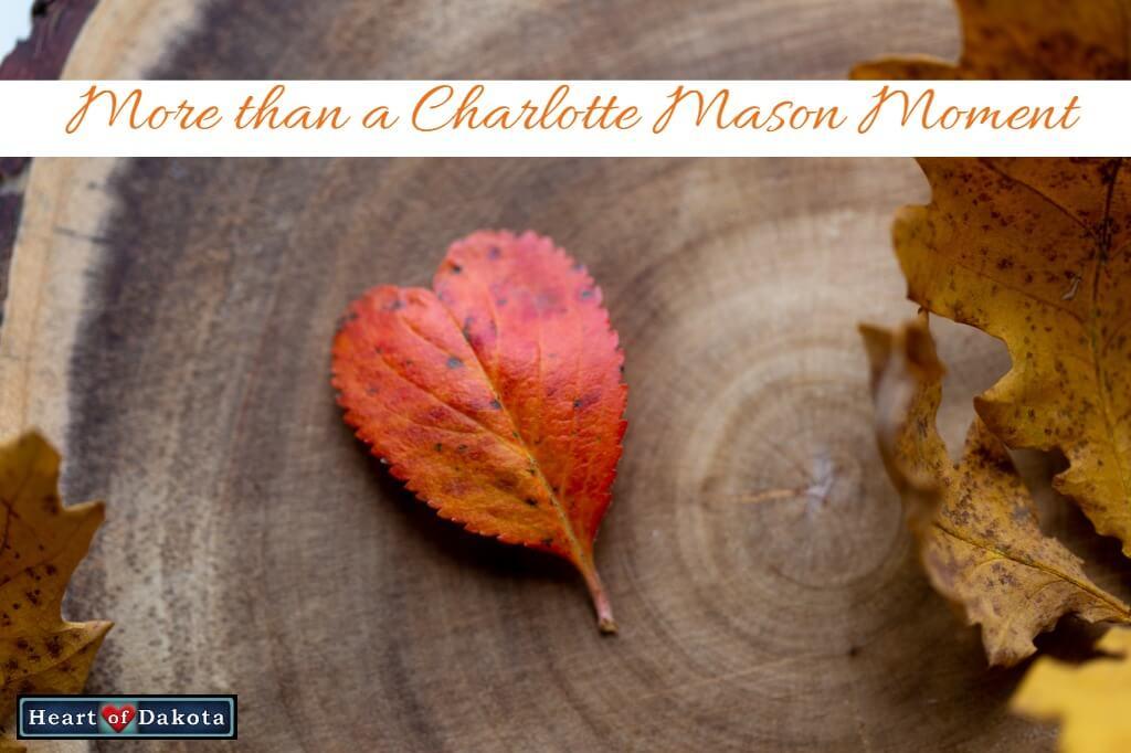 Heart of Dakota - More than a Charlotte Mason Moment - World Geography Fine Arts Credit